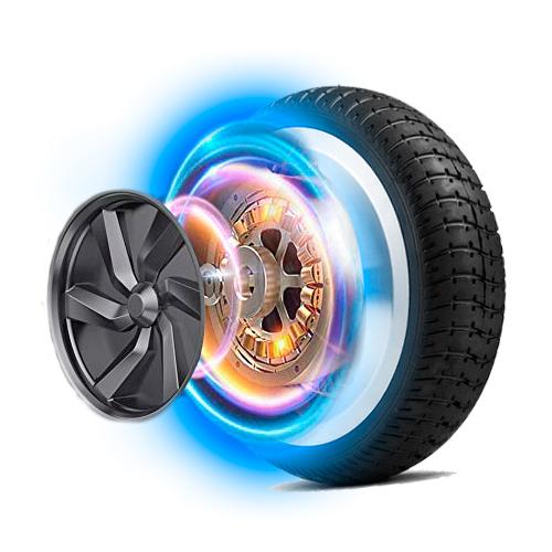 rueda-carbot-2021